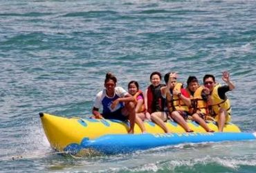 Banana Boat Business with fast ROI