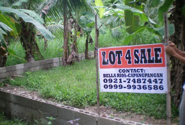 House and lot for sale – rush