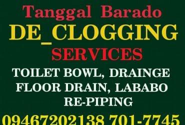 SAN JOE DEL MONTE BULACAN TUBERO TANGGAL BARADO SERVICES 701-7745 09357538342
