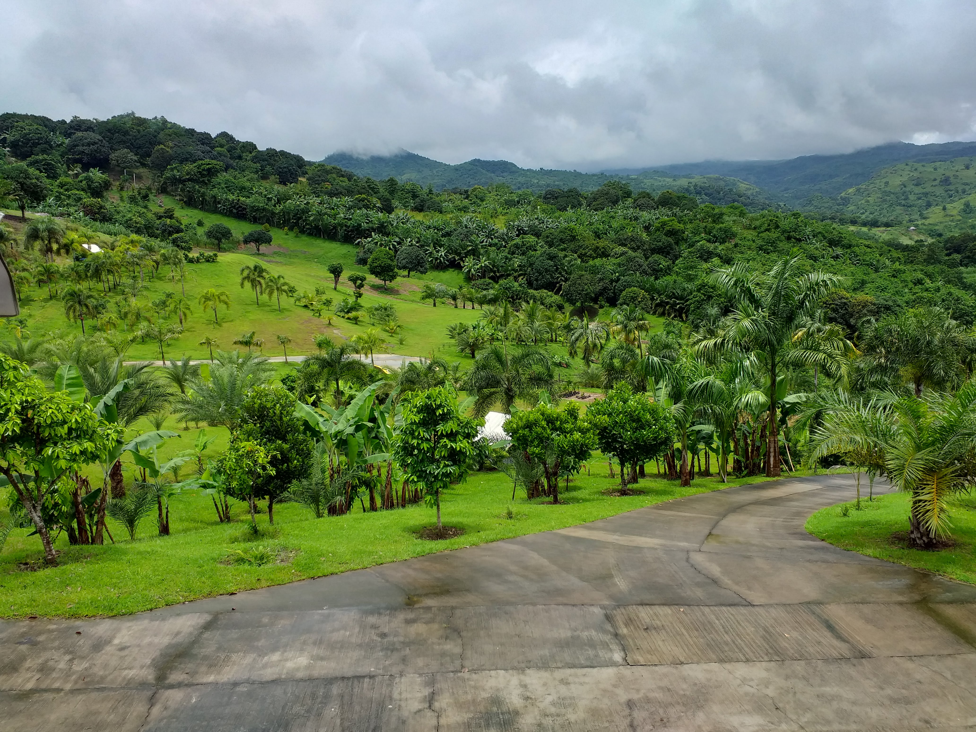 Palm Canyon Estates is for Sale, Clark. 6 hect and 2 homes, 5 house lots