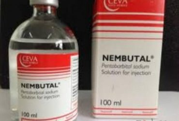 Buy diazepam, tramadol, Xanax, DMT, Wax, Nembutal, Lorazepam, LSD Vials, shrooms, Suboxone ETC