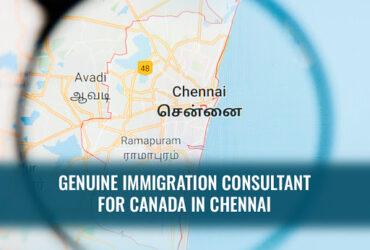 Best Immigration Consultant Chennai – Novusimmigrationchennai